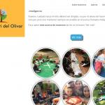 Colegio Montessori del Olivar